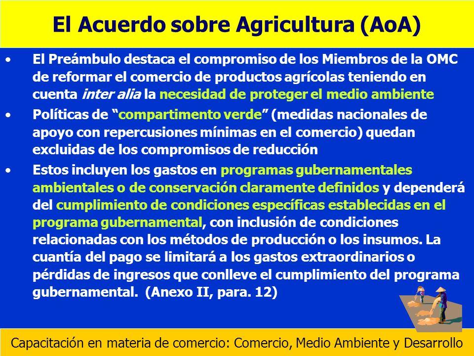 El Preámbulo destaca el compromiso de los Miembros de la OMC de reformar el comercio de productos agrícolas teniendo en cuenta inter alia la necesidad