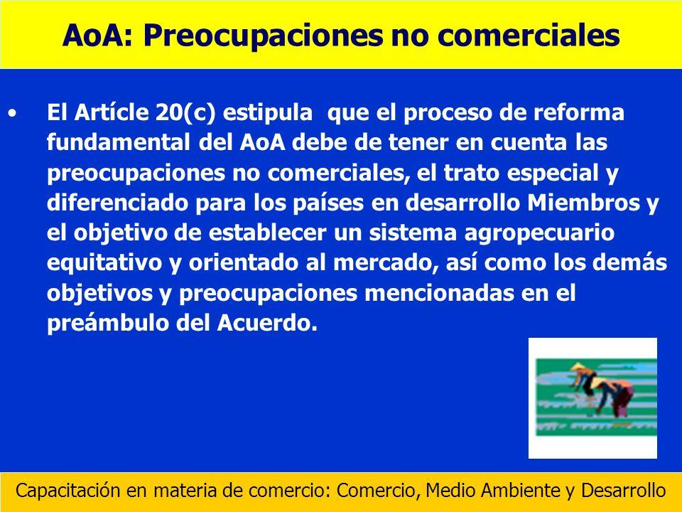 El Artícle 20(c) estipula que el proceso de reforma fundamental del AoA debe de tener en cuenta las preocupaciones no comerciales, el trato especial y