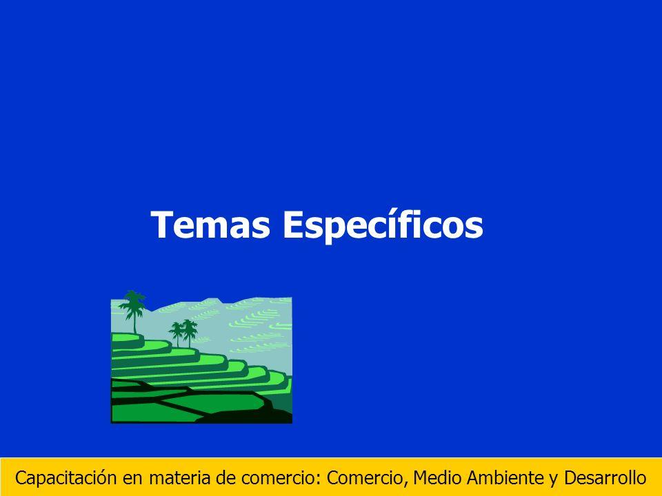 Temas Específicos Capacitación en materia de comercio: Comercio, Medio Ambiente y Desarrollo