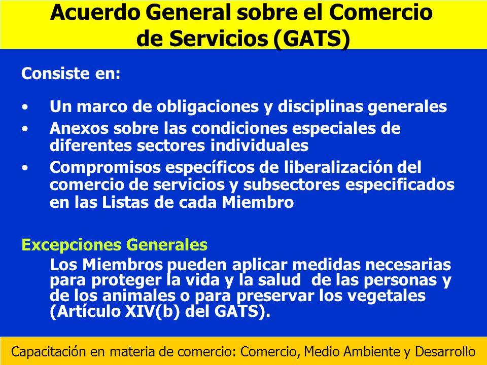 Consiste en: Un marco de obligaciones y disciplinas generales Anexos sobre las condiciones especiales de diferentes sectores individuales Compromisos