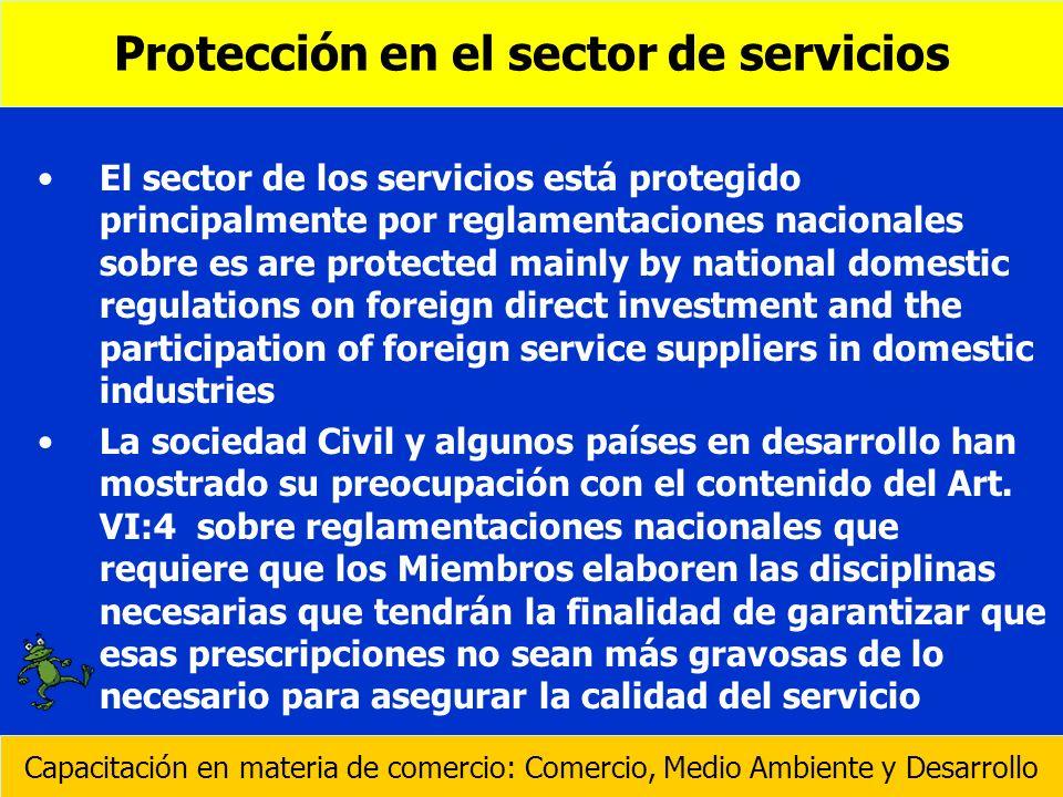 El sector de los servicios está protegido principalmente por reglamentaciones nacionales sobre es are protected mainly by national domestic regulation