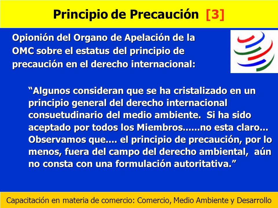 Opionión del Organo de Apelación de la OMC sobre el estatus del principio de precaución en el derecho internacional: Algunos consideran que se ha cris