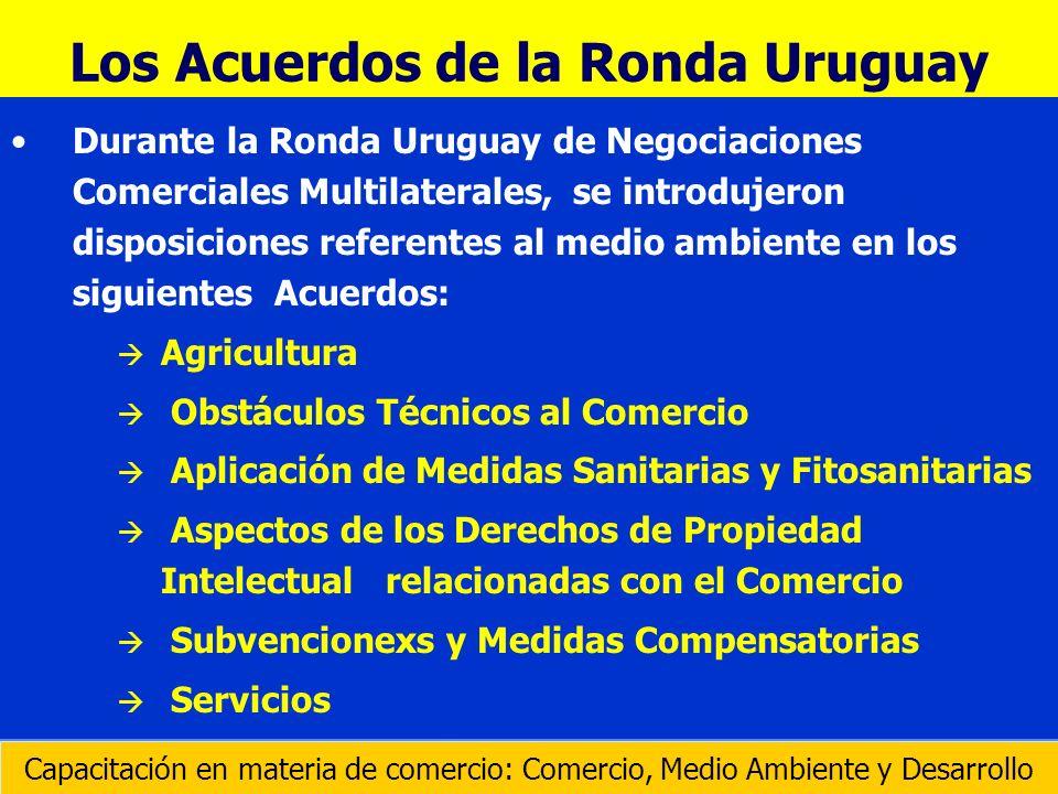 Establecido en abril de 1994 de conformidad con la Decisión Ministerial sobre Comercio y Medio Ambiente adoptada cuando la Ronda Uruguay llegaba a su fin.