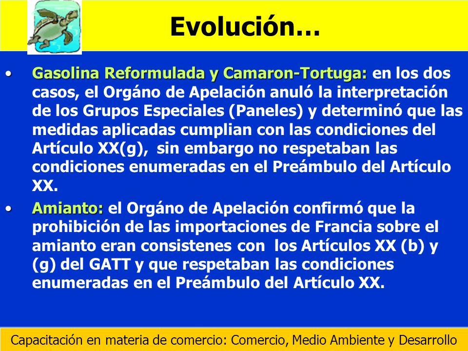 Gasolina Reformulada y Camaron-Tortuga:Gasolina Reformulada y Camaron-Tortuga: en los dos casos, el Orgáno de Apelación anuló la interpretación de los