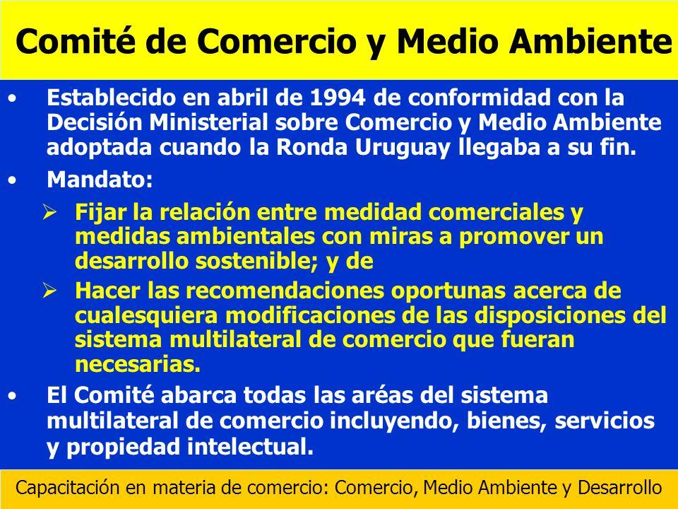 Establecido en abril de 1994 de conformidad con la Decisión Ministerial sobre Comercio y Medio Ambiente adoptada cuando la Ronda Uruguay llegaba a su
