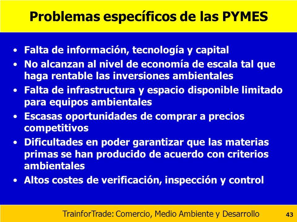 TrainforTrade: Comercio, Medio Ambiente y Desarrollo 43 Problemas específicos de las PYMES Falta de información, tecnología y capital No alcanzan al n
