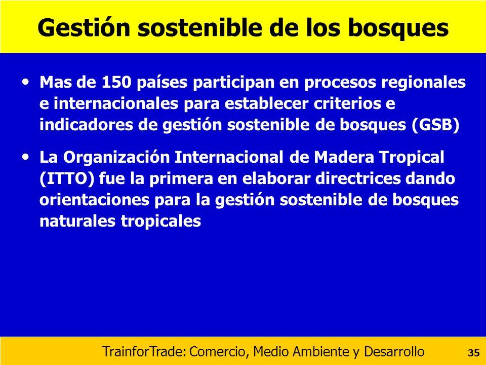 TrainforTrade: Comercio, Medio Ambiente y Desarrollo 35 Gestión sostenible de los bosques Mas de 150 países participan en procesos regionales e intern