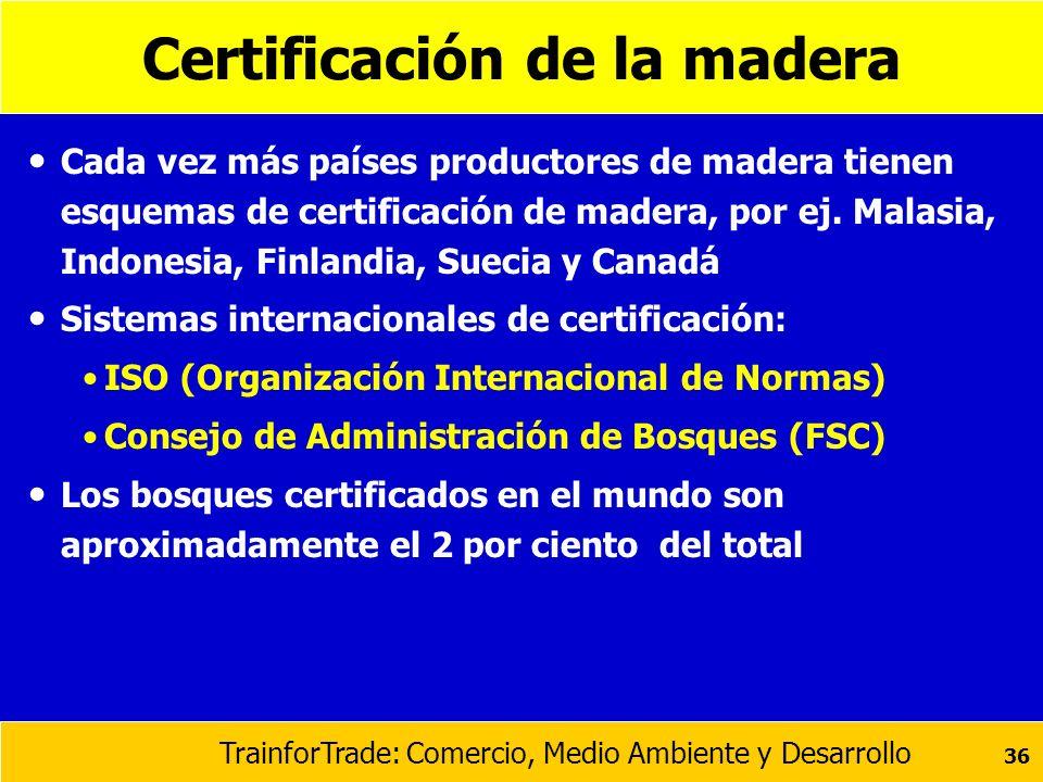 TrainforTrade: Comercio, Medio Ambiente y Desarrollo 36 Certificación de la madera Cada vez más países productores de madera tienen esquemas de certif