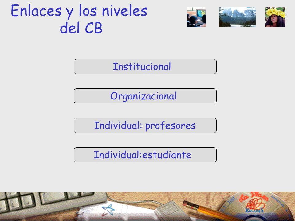 Institucional Organizacional Individual: profesores Individual:estudiante Enlaces y los niveles del CB