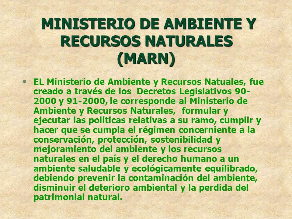 MINISTERIO DE AMBIENTE Y RECURSOS NATURALES (MARN) EL Ministerio de Ambiente y Recursos Natuales, fue creado a través de los Decretos Legislativos 90-