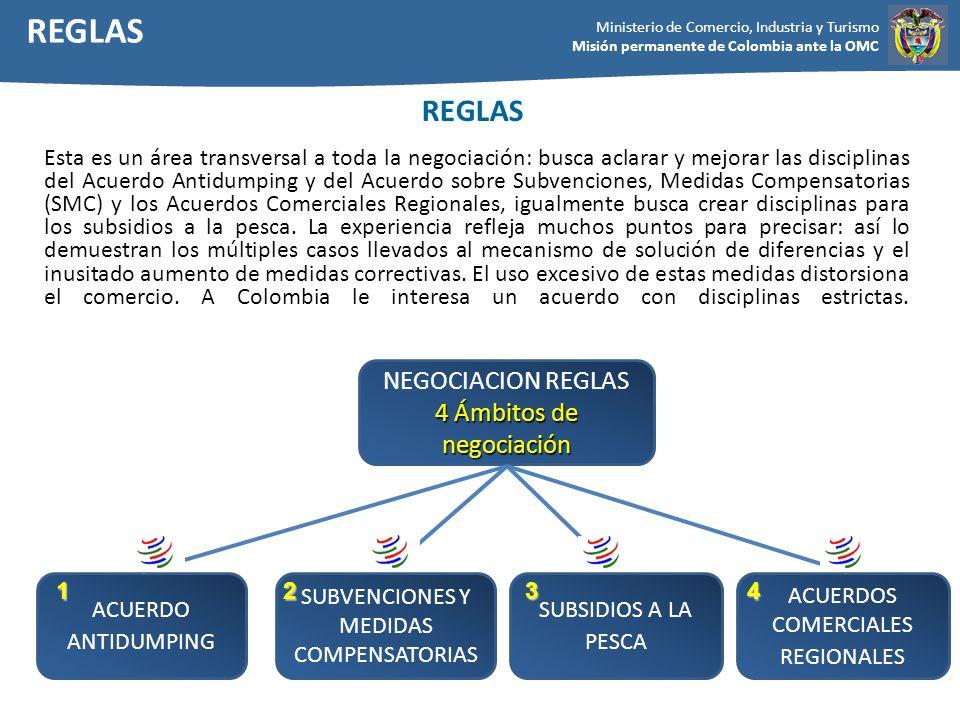 Ministerio de Comercio, Industria y Turismo Misión permanente de Colombia ante la OMC Esta es un área transversal a toda la negociación: busca aclarar