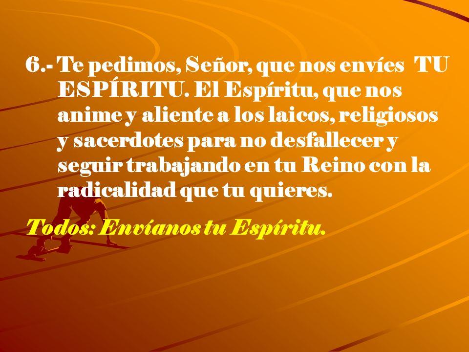 6.- Te pedimos, Señor, que nos envíes TU ESPÍRITU. El Espíritu, que nos anime y aliente a los laicos, religiosos y sacerdotes para no desfallecer y se