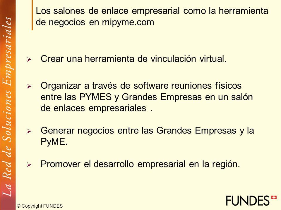 © Copyright FUNDES Crear una herramienta de vinculación virtual. Organizar a través de software reuniones físicos entre las PYMES y Grandes Empresas e