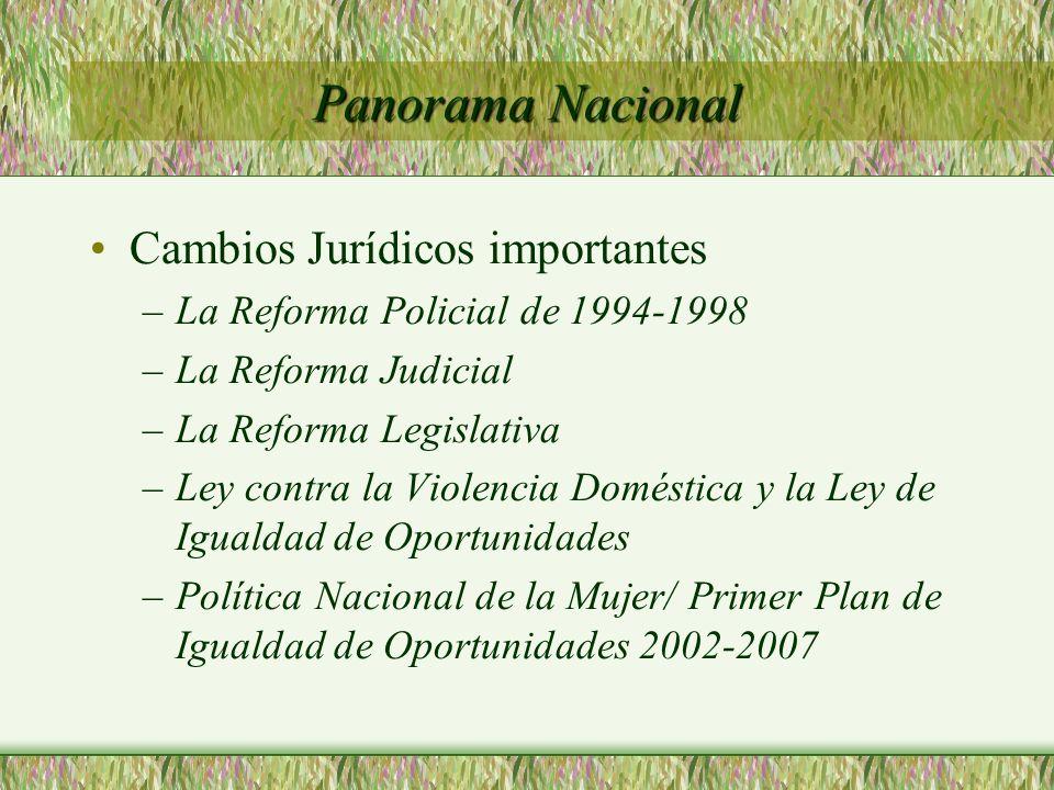 Cambios Jurídicos importantes –La Reforma Policial de 1994-1998 –La Reforma Judicial –La Reforma Legislativa –Ley contra la Violencia Doméstica y la L