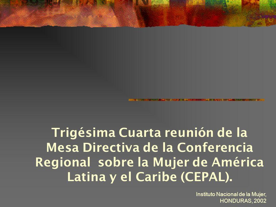 Instituto Nacional de la Mujer, HONDURAS, 2002 Fortalecimiento de las organizaciones y redes de mujeres en la sociedad civil y su capacidad para ejercer influencia en la políticas públicas.