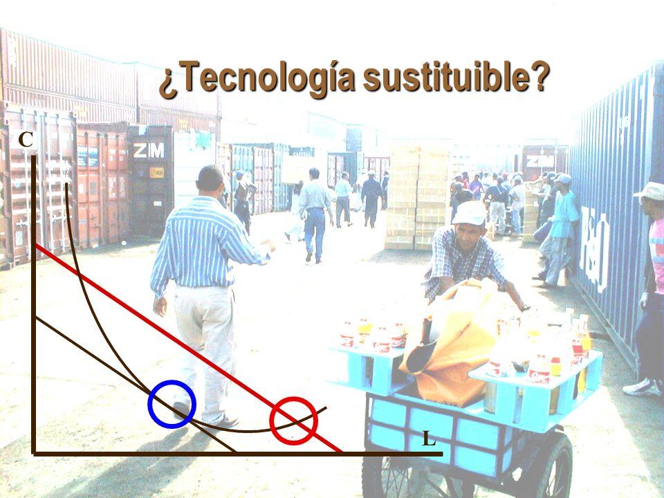 Jan.Hoffmann @ UNCTAD.org ¿Tecnología sustituible? C L