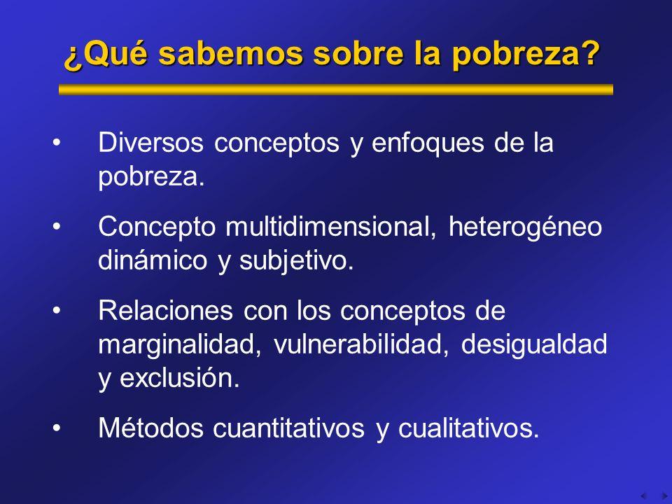 ¿Qué sabemos sobre la pobreza? Diversos conceptos y enfoques de la pobreza. Concepto multidimensional, heterogéneo dinámico y subjetivo. Relaciones co