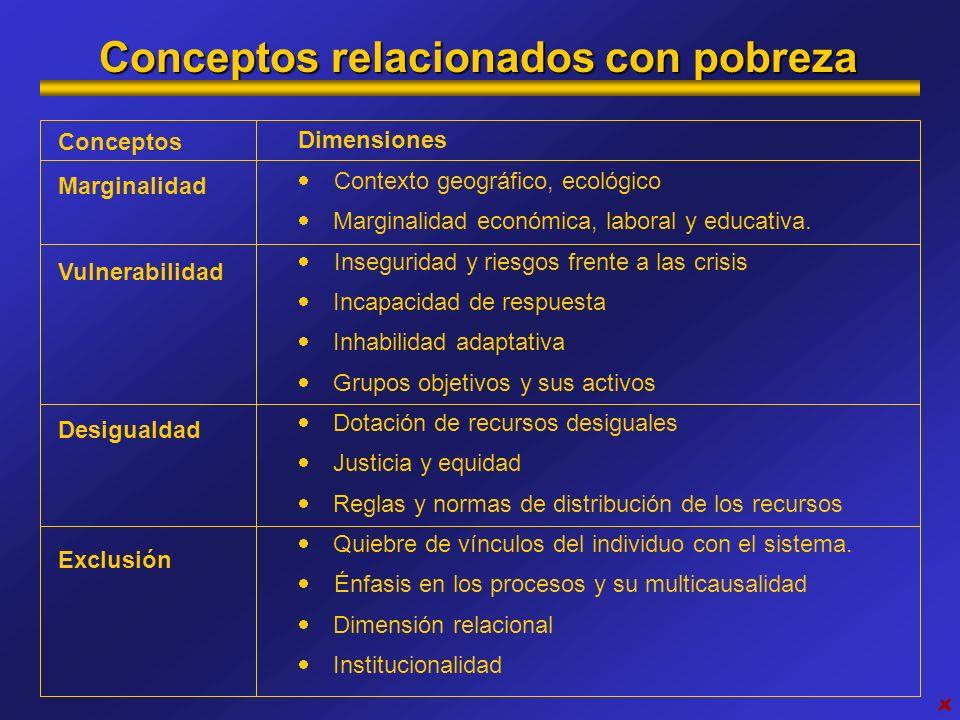 Conceptos relacionados con pobreza Dimensiones Contexto geográfico, ecológico Marginalidad económica, laboral y educativa. Inseguridad y riesgos frent