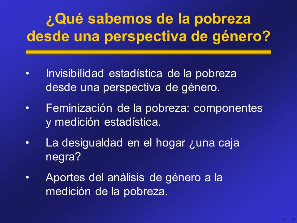¿Qué sabemos de la pobreza desde una perspectiva de género? Invisibilidad estadística de la pobreza desde una perspectiva de género. Feminización de l