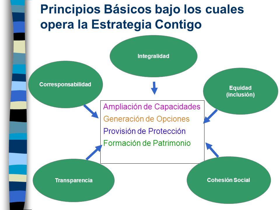 Ampliación de Capacidades Generación de Opciones Provisión de Protección Formación de Patrimonio Principios Básicos bajo los cuales opera la Estrategi