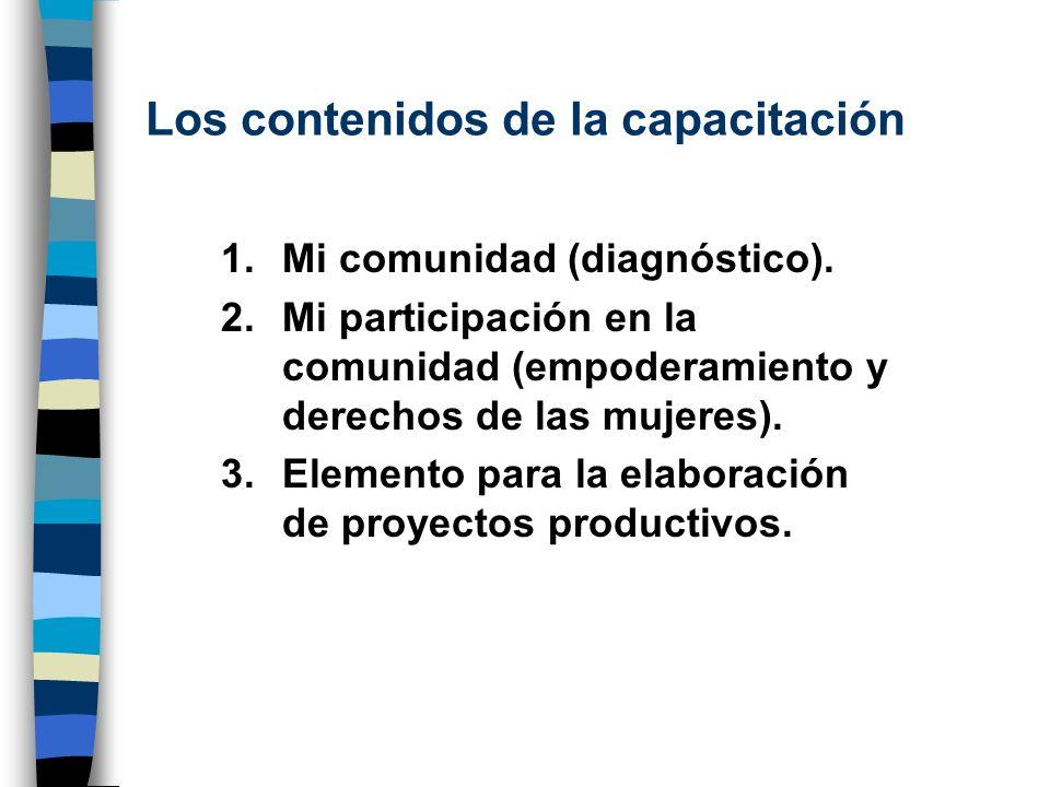 Los contenidos de la capacitación 1.Mi comunidad (diagnóstico). 2.Mi participación en la comunidad (empoderamiento y derechos de las mujeres). 3.Eleme