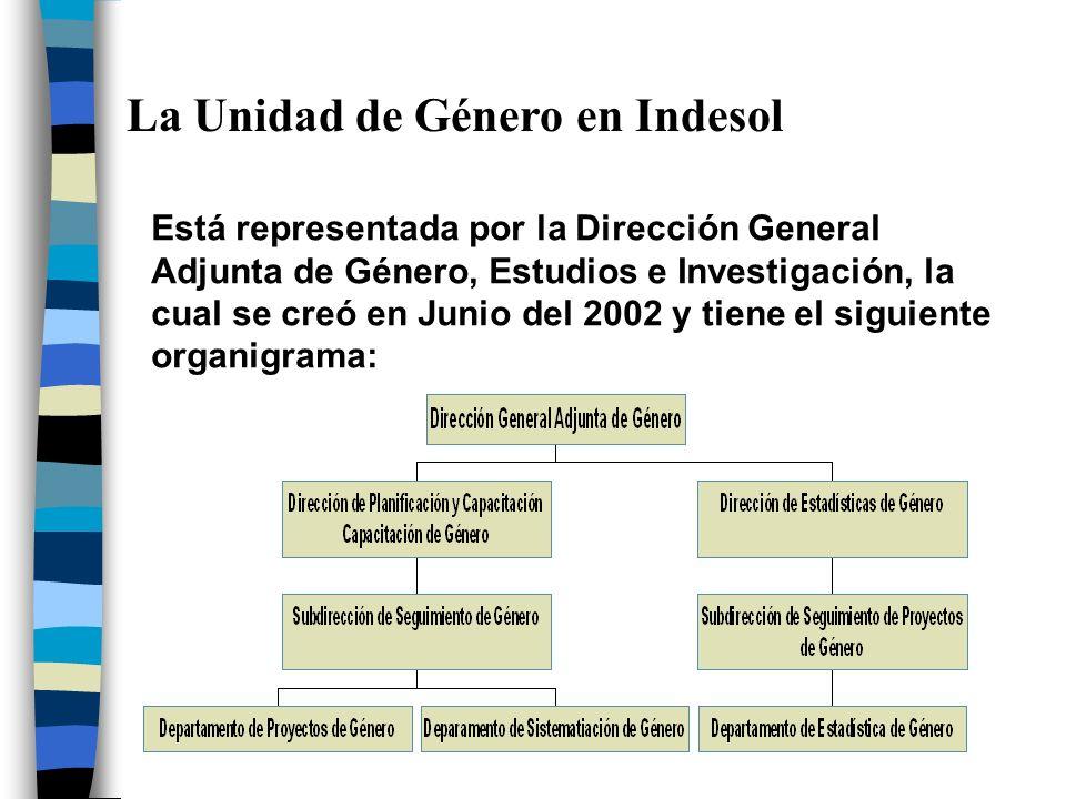La Unidad de Género en Indesol Está representada por la Dirección General Adjunta de Género, Estudios e Investigación, la cual se creó en Junio del 20