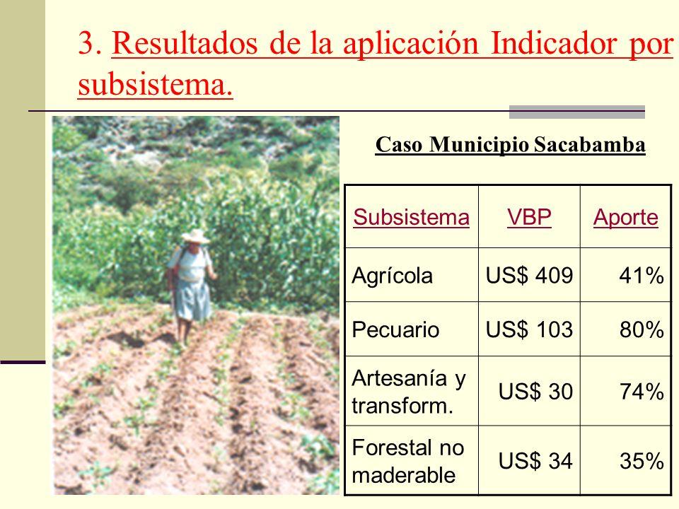 3. Resultados de la aplicación Indicador por subsistema. SubsistemaVBPAporte AgrícolaUS$ 40941% PecuarioUS$ 10380% Artesanía y transform. US$ 3074% Fo