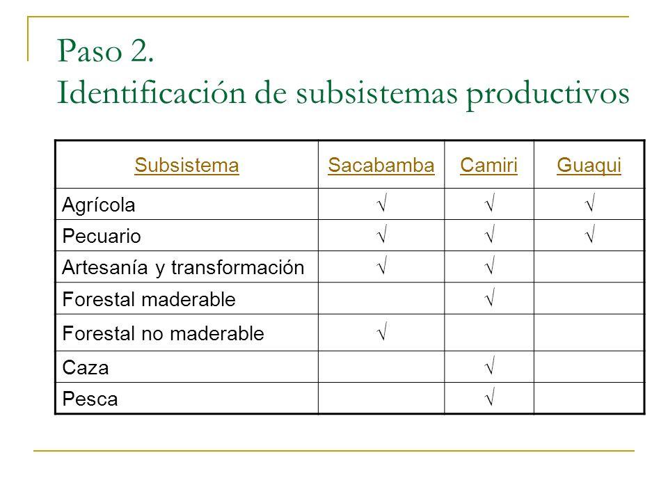Paso 2. Identificación de subsistemas productivos SubsistemaSacabambaCamiriGuaqui Agrícola Pecuario Artesanía y transformación Forestal maderable Fore