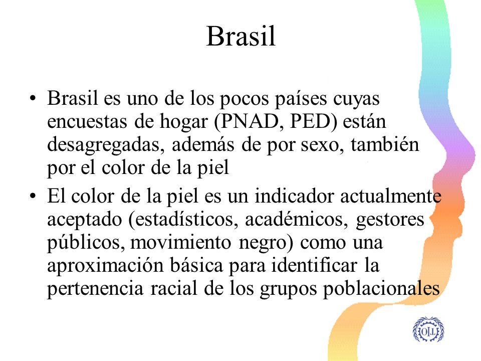 Brasil Brasil es uno de los pocos países cuyas encuestas de hogar (PNAD, PED) están desagregadas, además de por sexo, también por el color de la piel
