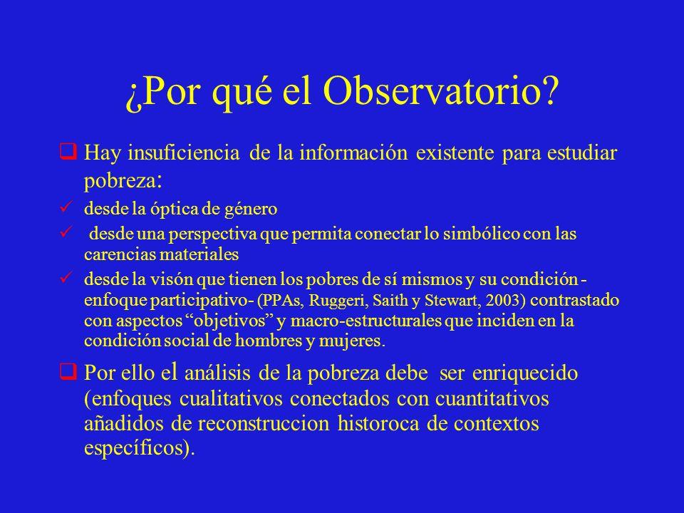 ¿Qué información contiene el Observatorio.1.