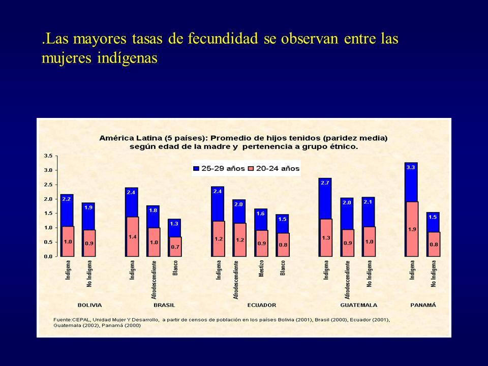.Las mayores tasas de fecundidad se observan entre las mujeres indígenas