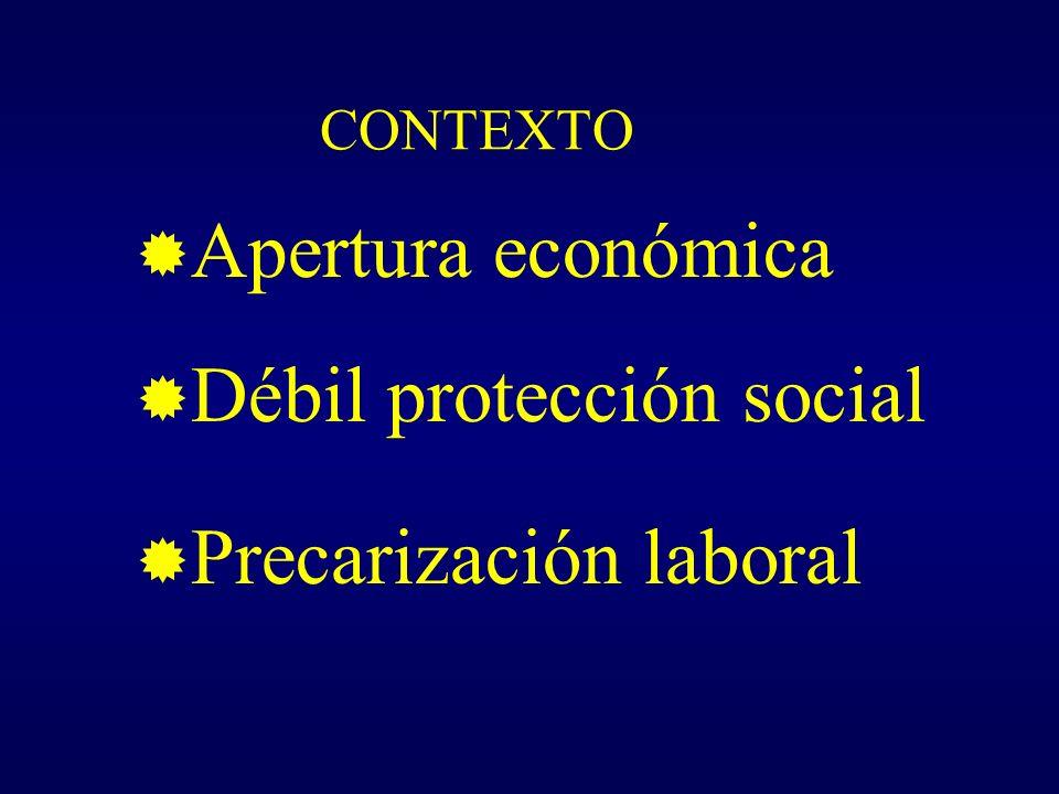 CONTEXTO Apertura económica Débil protección social Precarización laboral