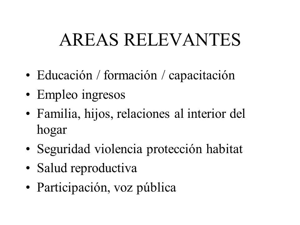 AREAS RELEVANTES Educación / formación / capacitación Empleo ingresos Familia, hijos, relaciones al interior del hogar Seguridad violencia protección