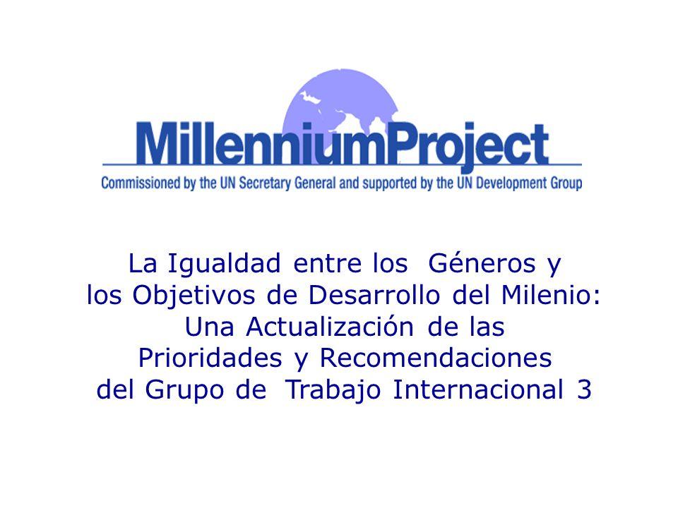 La Igualdad entre los Géneros y los Objetivos de Desarrollo del Milenio: Una Actualización de las Prioridades y Recomendaciones del Grupo de Trabajo I