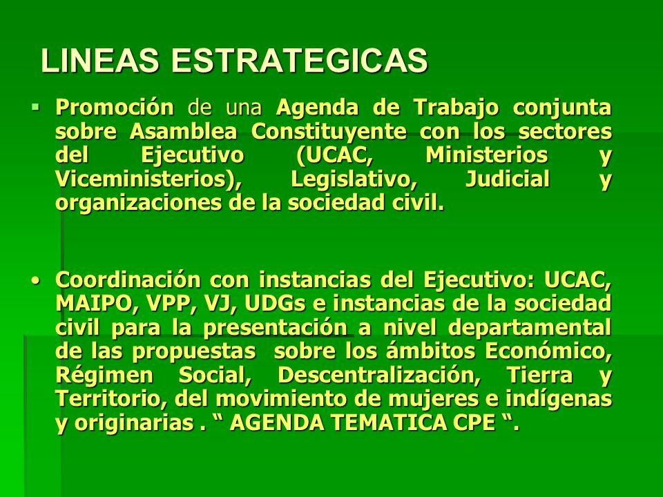 LINEAS ESTRATEGICAS Promoción de una Agenda de Trabajo conjunta sobre Asamblea Constituyente con los sectores del Ejecutivo (UCAC, Ministerios y Viceministerios), Legislativo, Judicial y organizaciones de la sociedad civil.