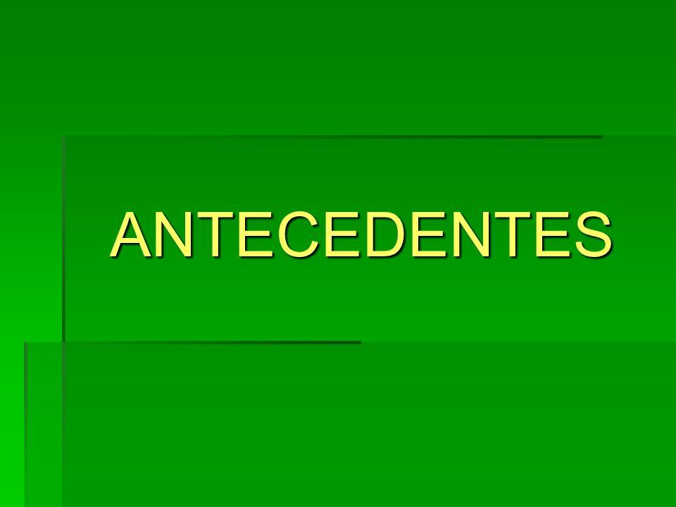ANTECEDENTES ANTECEDENTES