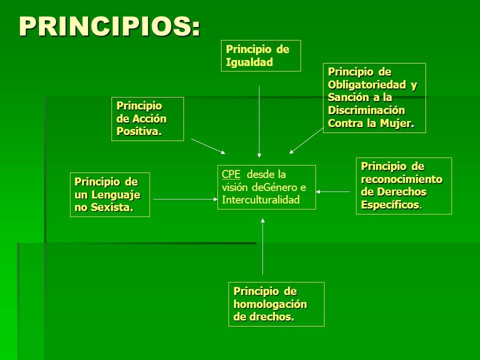 PRINCIPIOS: Principio de un Lenguaje no Sexista. Principio de Obligatoriedad y Sanción a la Discriminación Contra la Mujer. CPE desde la visión deGéne