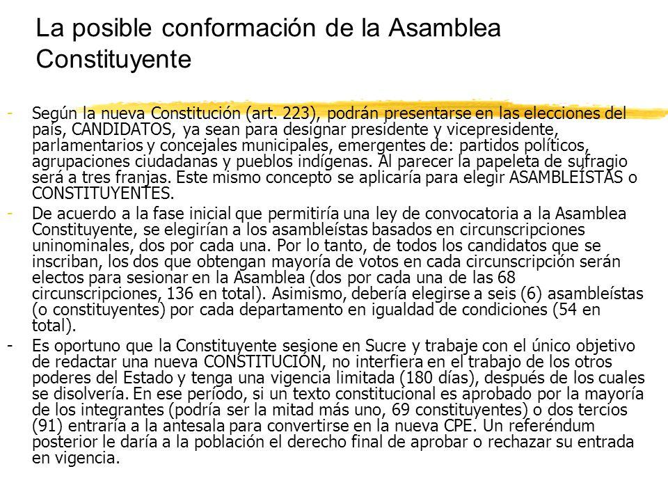 La posible conformación de la Asamblea Constituyente -Según la nueva Constitución (art.