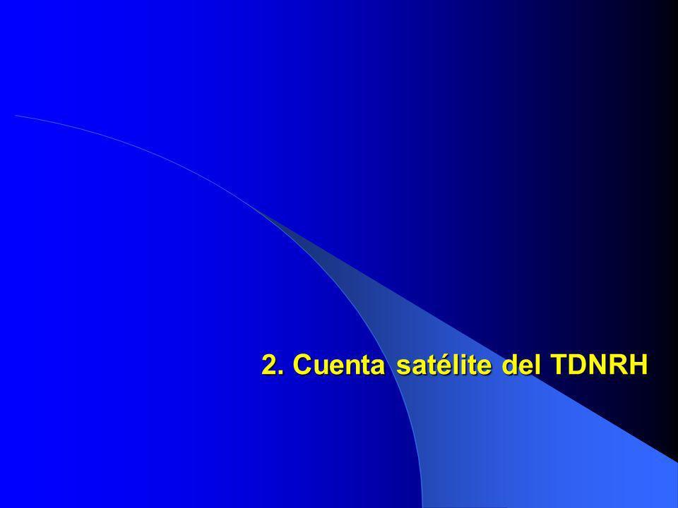 2. Cuenta satélite del TDNRH