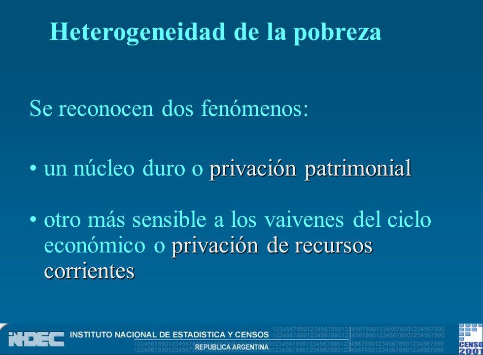 Se reconocen dos fenómenos: privación patrimonialun núcleo duro o privación patrimonial privación de recursos corrientesotro más sensible a los vaiven