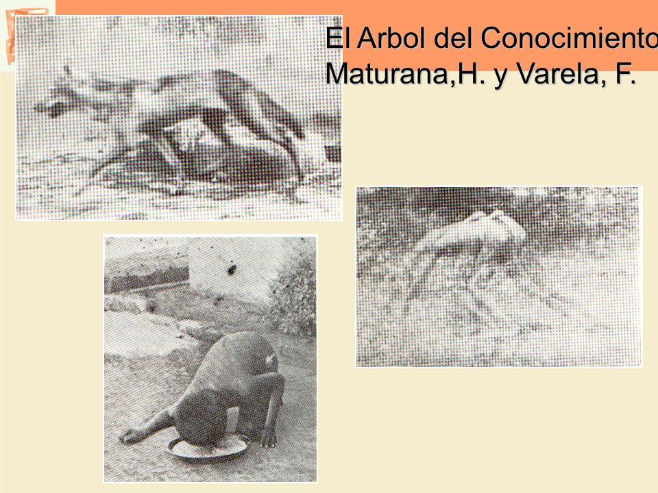 El Arbol del Conocimiento Maturana,H. y Varela, F.