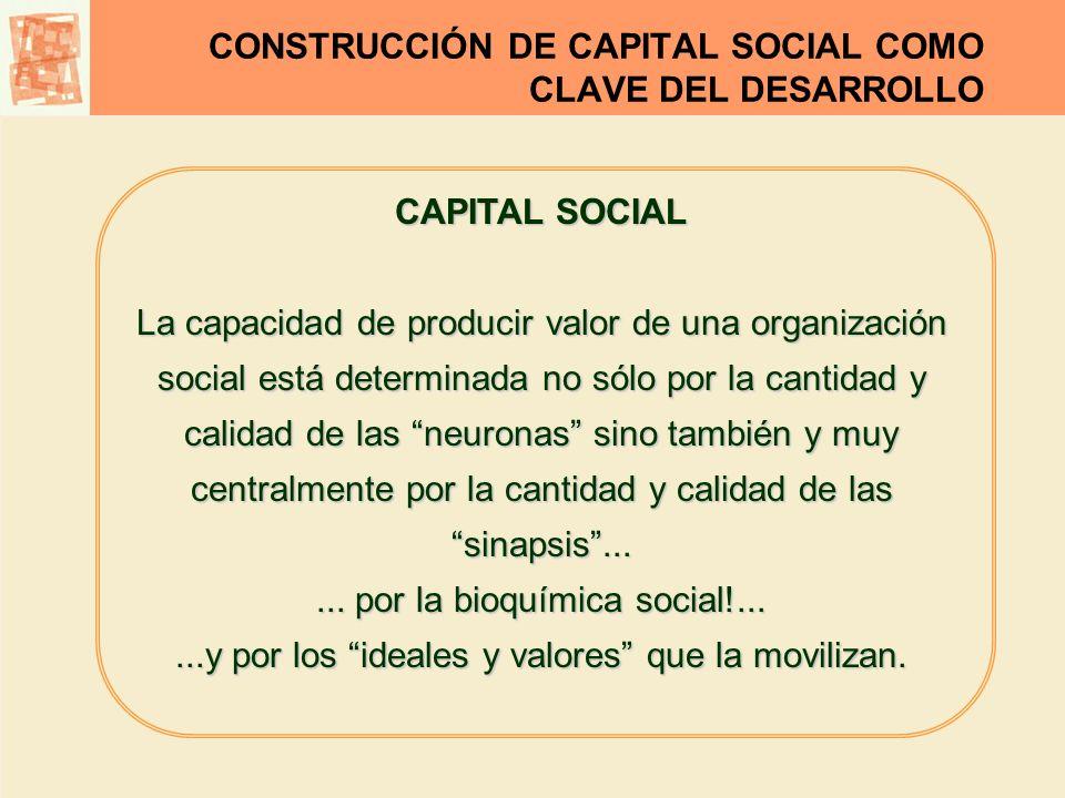 CONSTRUCCIÓN DE CAPITAL SOCIAL COMO CLAVE DEL DESARROLLO CAPITAL SOCIAL La capacidad de producir valor de una organización social está determinada no
