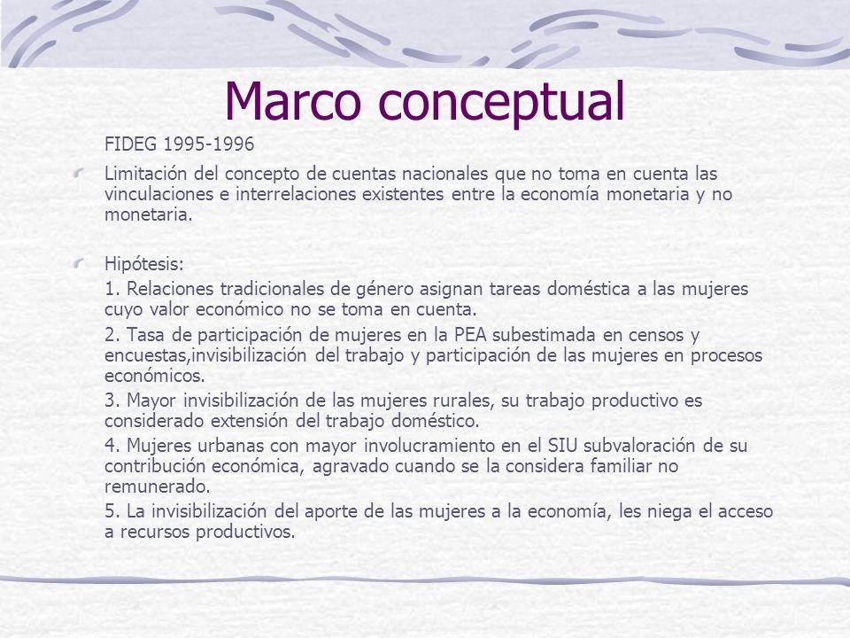 Marco conceptual FIDEG 1995-1996 Limitación del concepto de cuentas nacionales que no toma en cuenta las vinculaciones e interrelaciones existentes entre la economía monetaria y no monetaria.