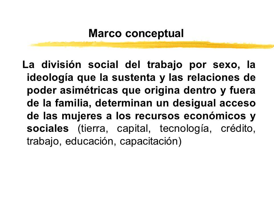 Marco conceptual La división social del trabajo por sexo, la ideología que la sustenta y las relaciones de poder asimétricas que origina dentro y fuer