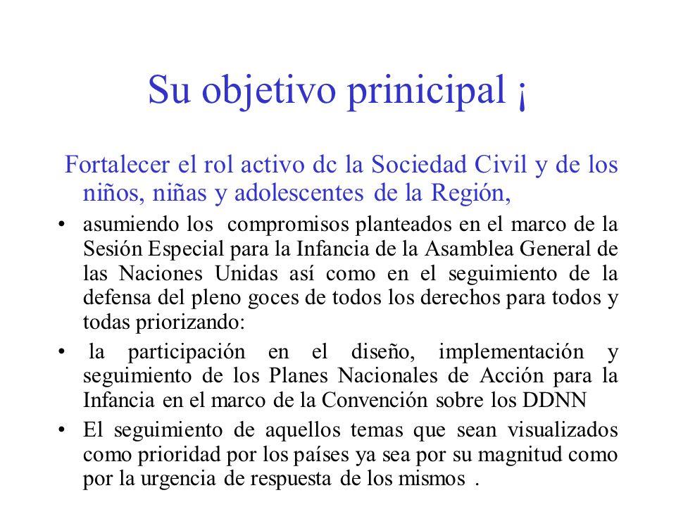 Su objetivo prinicipal ¡ Fortalecer el rol activo dc la Sociedad Civil y de los niños, niñas y adolescentes de la Región, asumiendo los compromisos pl