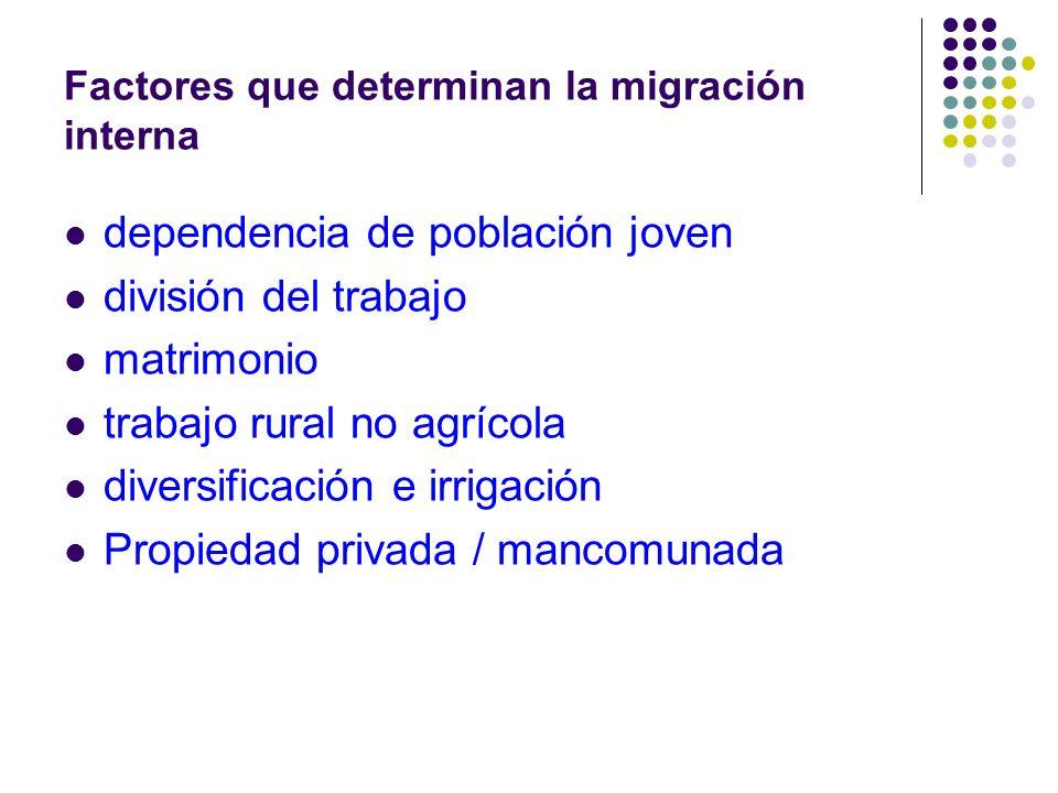 Factores que determinan la migración interna dependencia de población joven división del trabajo matrimonio trabajo rural no agrícola diversificación