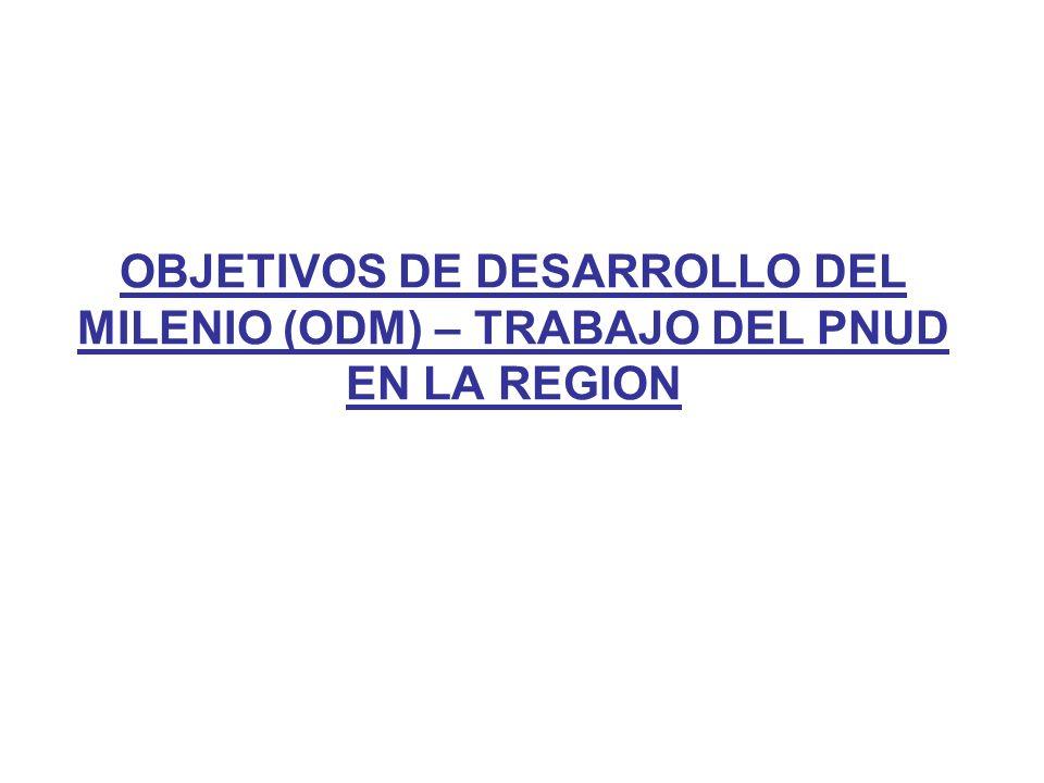 OBJETIVOS DE DESARROLLO DEL MILENIO (ODM) – TRABAJO DEL PNUD EN LA REGION