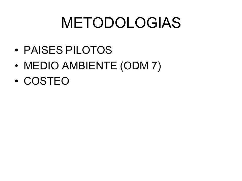 METODOLOGIAS PAISES PILOTOS MEDIO AMBIENTE (ODM 7) COSTEO