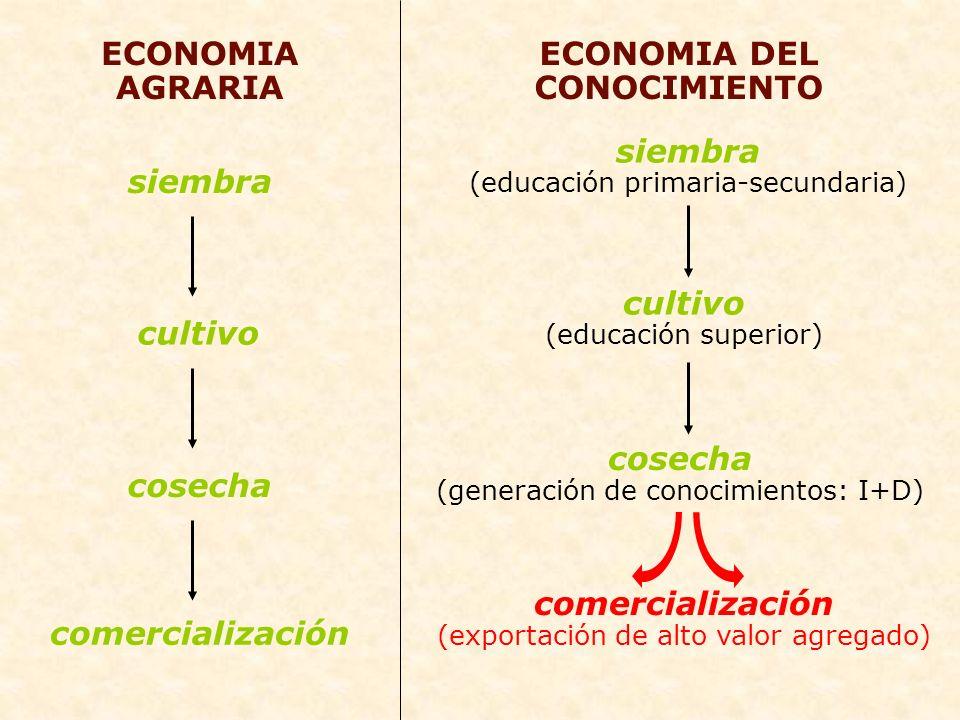 ECONOMIA DEL CONOCIMIENTO siembra (educación primaria-secundaria) ECONOMIA AGRARIA siembra cultivo cosecha comercialización cultivo (educación superio
