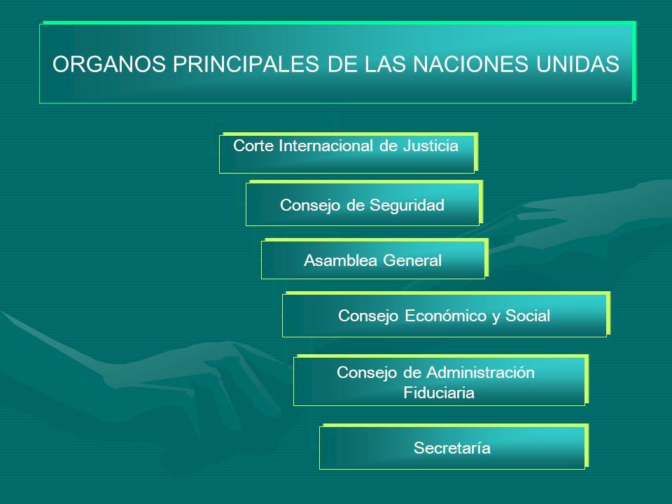ORGANOS PRINCIPALES DE LAS NACIONES UNIDAS Corte Internacional de Justicia Consejo de Seguridad Asamblea General Consejo de Administración Fiduciaria Secretaría Consejo Económico y Social